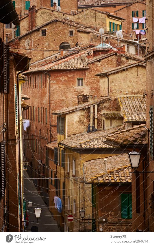 Siena Old Town Vacation & Travel City trip Downtown Old town House (Residential Structure) Architecture Street Alley Historic Brown Tradition Tuscany Laundry