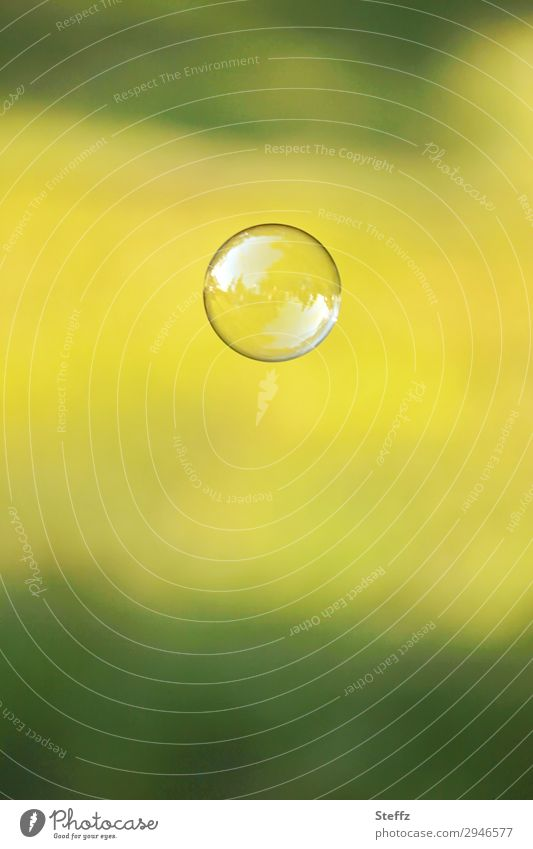 sphere Sphere Soap bubble Bubble Simple Free Glittering Round Beautiful Yellow Green Attentive Watchfulness Serene Idyll Ease Symmetry Transience Hover Easy