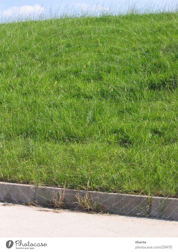 Elbe dyke Dike Grass Green Asphalt Sky