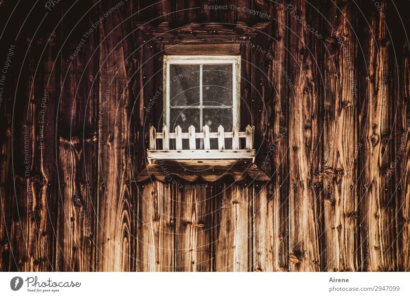 Flower box (without flowers) Wooden house Wooden wall Facade Window Window box Old Dark Creepy Brown White Poverty Hidden Mysterious Uninhabited Closed Rural