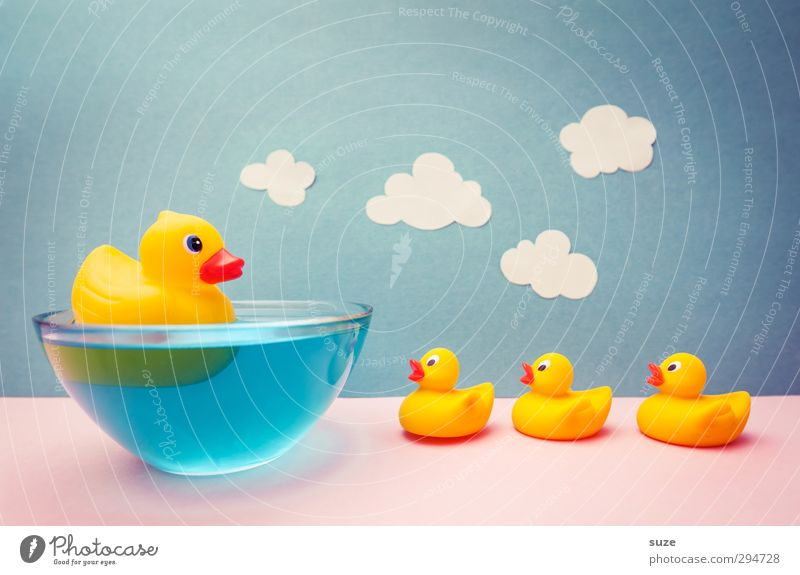 Squeaky fun Design Joy Swimming & Bathing Leisure and hobbies Playing Handicraft Infancy Water Sky Clouds Paper Toys Squeak duck Friendliness Happiness Kitsch