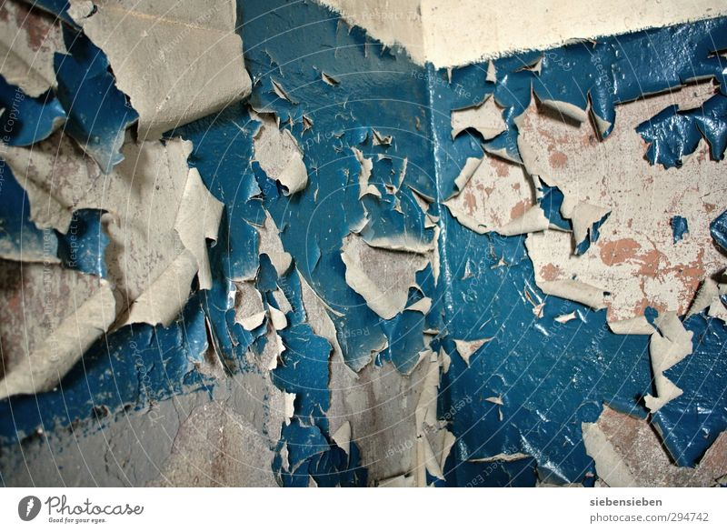 Blue Old House (Residential Structure) Wall (building) Senior citizen Wall (barrier) Building Stone Work and employment Room Flat (apartment) Dirty Broken Uniqueness Painting (action, work) Decline