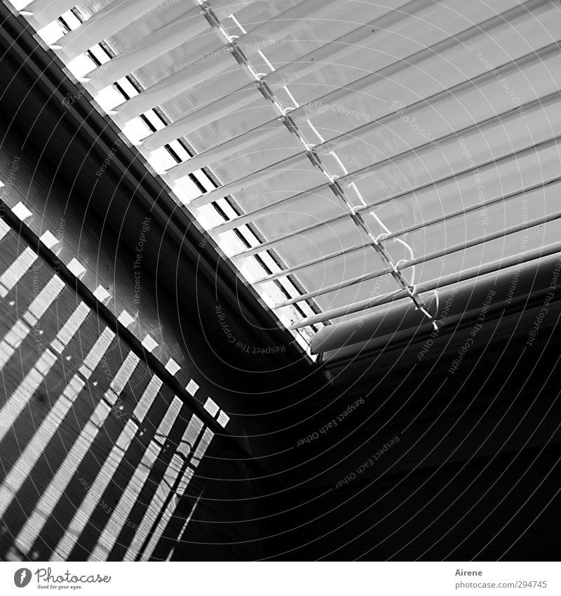 White Black Window Interior design Line Room Flat (apartment) Arrangement Roof Stripe Clarity Information Technology Sharp-edged Precision Venetian blinds