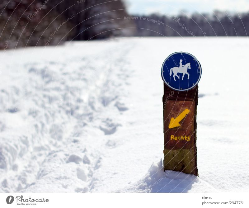 Ways & Paths | No Bearing Winter Beautiful weather Snow Forest Sign Characters Signs and labeling Cold Funny Crazy High spirits Popular belief False Discover