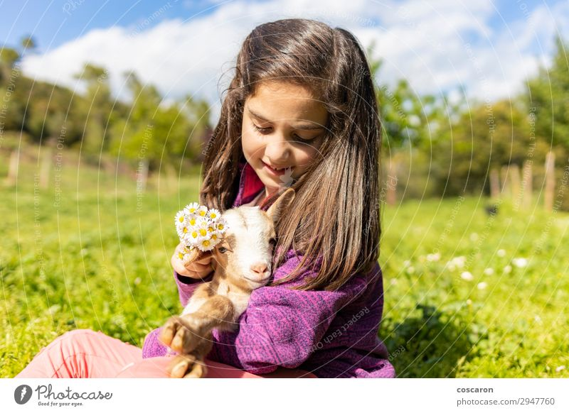 Cute little girl putting flowers ona agoat's head Woman Child Human being Nature Summer Beautiful Green White Tree Animal Calm Joy Girl Lifestyle Adults Love