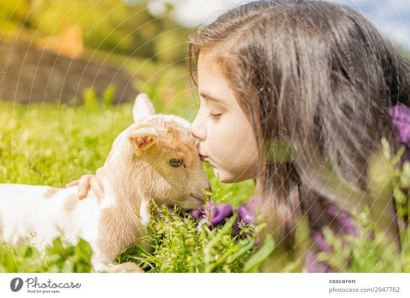 Little girl kissing a goat. Close up Lifestyle Happy Beautiful Relaxation Calm Leisure and hobbies Playing Vacation & Travel Summer Summer vacation Garden Child
