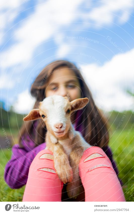 Little girl hugging a goat on a field Woman Child Human being Vacation & Travel Nature Summer Beautiful Green White Animal Joy Girl Mountain Lifestyle Adults