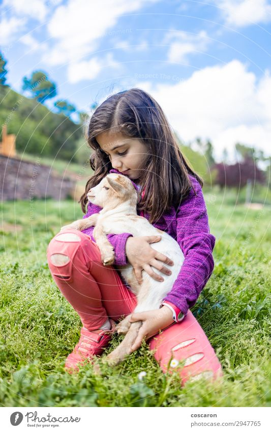 Little girl hugging a goat on a field Child Human being Sky Vacation & Travel Nature Summer Beautiful Green White Animal Joy Girl Lifestyle Love Feminine Meadow