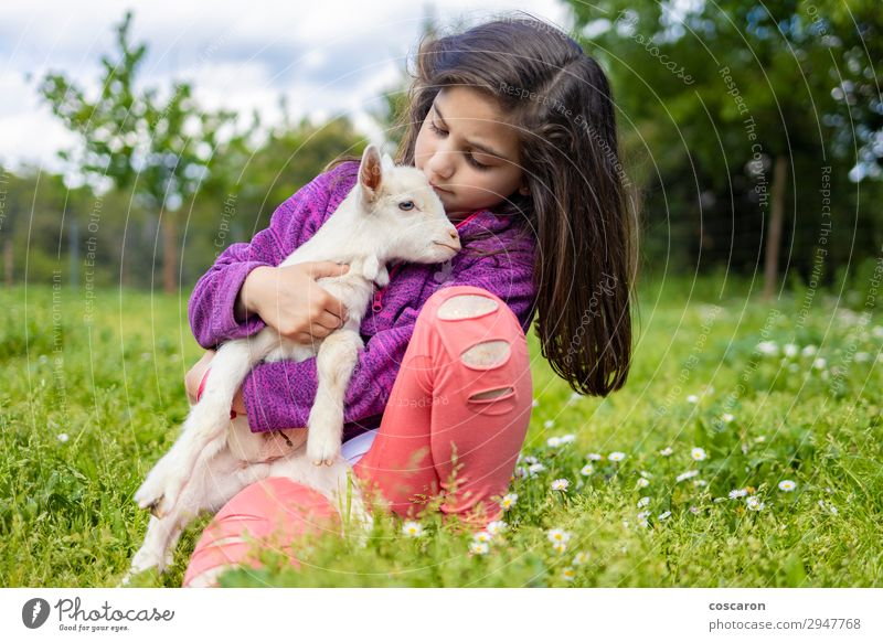 Little girl hugging a goat on a field Woman Child Human being Nature Summer Beautiful Green White Tree Animal Girl Lifestyle Adults Spring Feminine Meadow