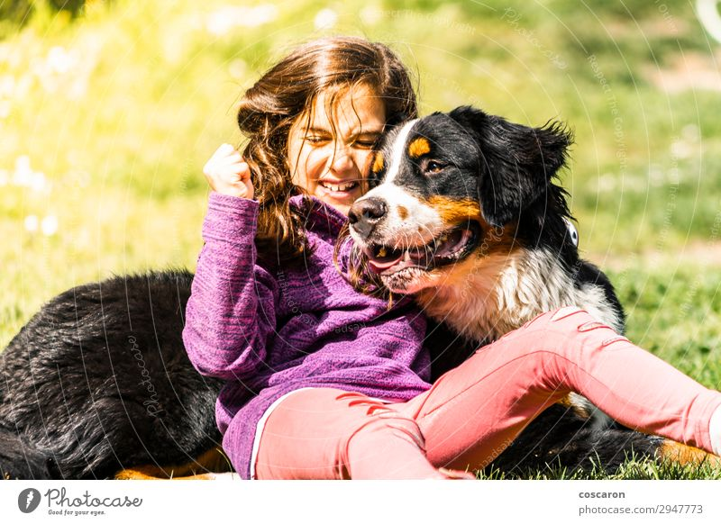 Little girl with a Bernese mountain dog Lifestyle Joy Happy Leisure and hobbies Playing Vacation & Travel Summer Mountain Child Human being Feminine Baby