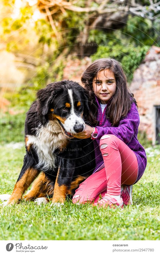 Little girl with a Bernese mountain dog Lifestyle Joy Happy Beautiful Leisure and hobbies Playing Vacation & Travel Summer Summer vacation Mountain Garden Child