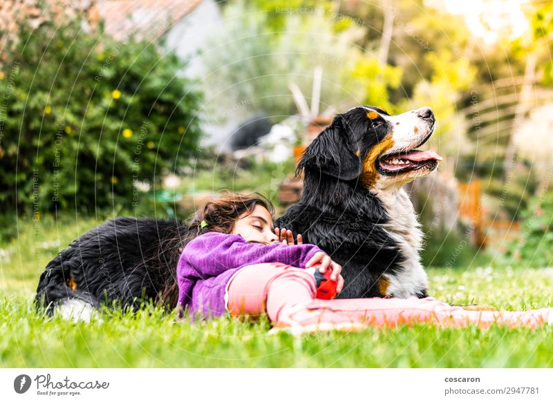 Little girl sleeping on top of a Bernese mountain dog Woman Child Human being Vacation & Travel Nature Dog Summer Beautiful Green Sun Animal Joy Girl Black