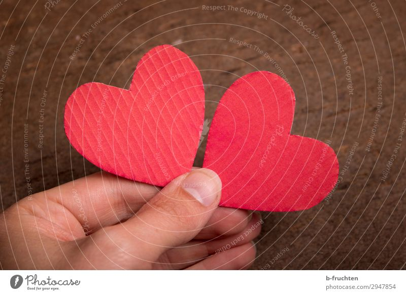 be in love Harmonious Contentment Wedding Team Fingers Sign Heart Select To hold on Love Happy Red Together Infatuation Loyalty Romance Society Attachment