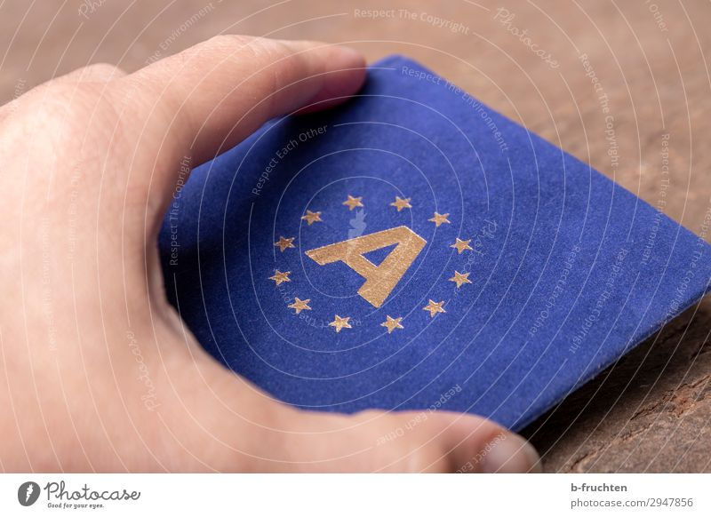 European Economy Business Hand Fingers Sign Utilize To hold on Blue Austria Star (Symbol) European flag Sheath Border Infinity Driver's license Colour photo