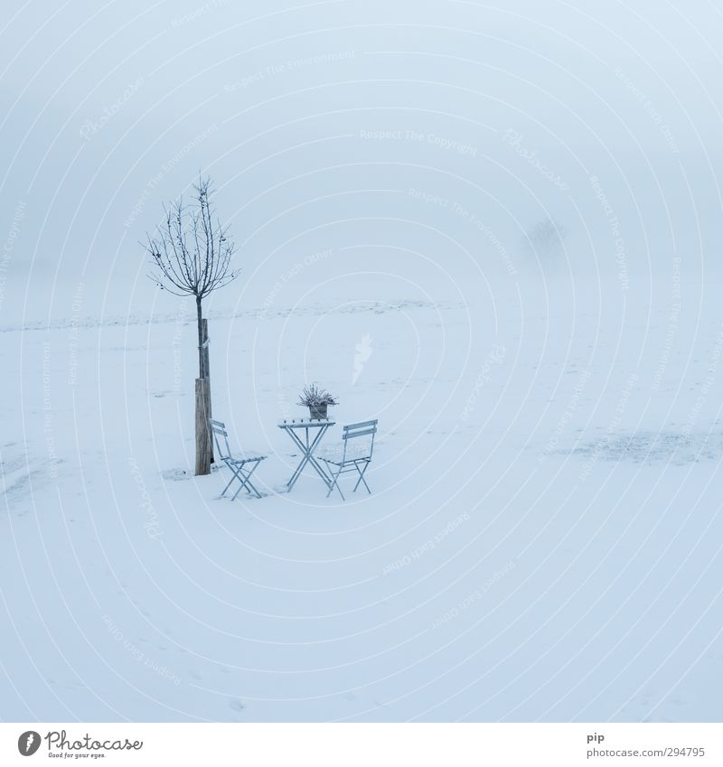 beginning of spring without beginning Environment Nature Landscape Horizon Spring Winter Climate change Bad weather Ice Frost Snow Tree Meadow Cold Chair Table