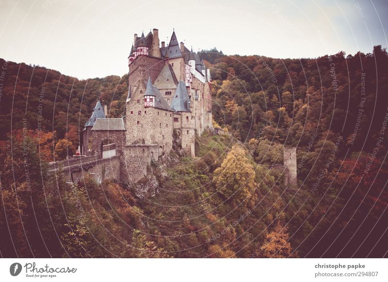 Castle Eltz Tourism City trip Autumn Forest Hill Manmade structures Building Tourist Attraction Landmark Monument Old Threat Famousness Historic brave sb./sth.