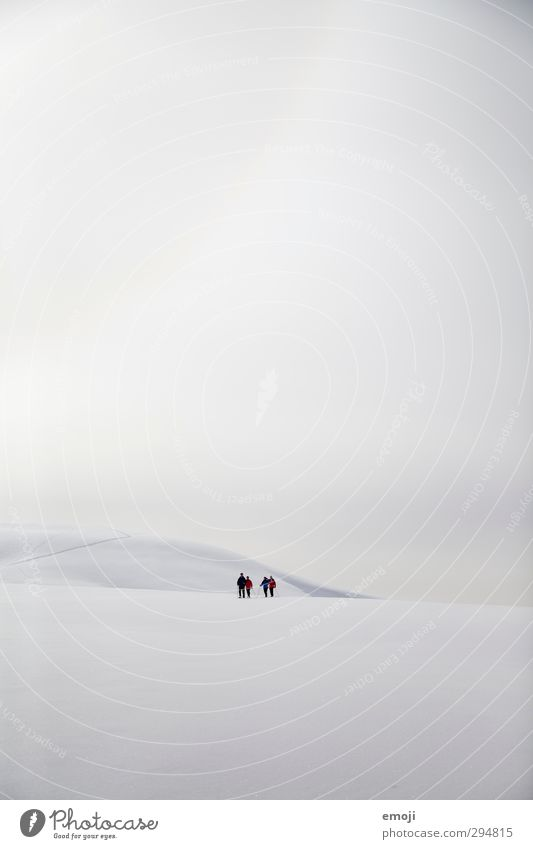 snowshoe walker 4 Human being Group Environment Nature Sky Clouds Winter Snow Alps Mountain Peak Snowcapped peak Bright Cold White Far-off places Remote