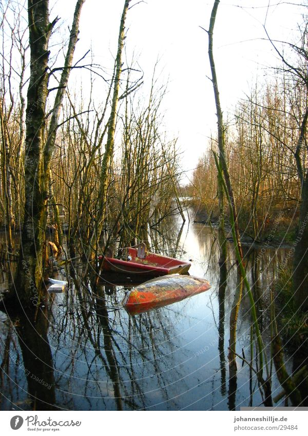 broken boat Lake Watercraft Ocean Rowboat Tree River