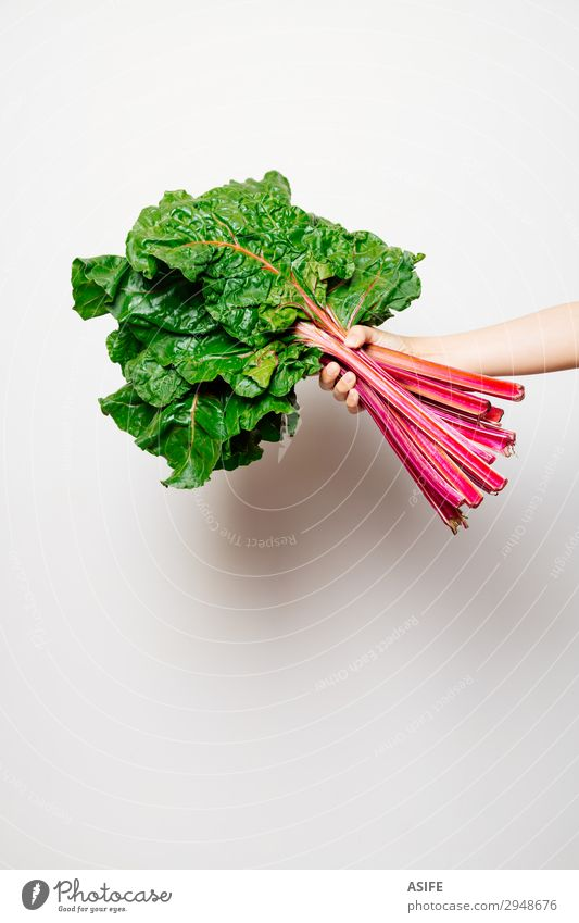 Arm of a girl holding a bunch of swiss chard Woman Child Beautiful Green White Red Hand Leaf Adults Nutrition Fresh Vegetable Indicate Vegetarian diet