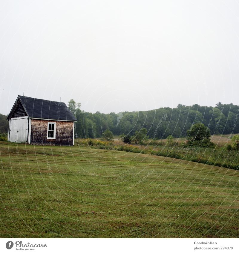 New England. Environment Nature Grass Garden Small Town Outskirts Deserted House (Residential Structure) Hut Facade Old Cold Colour photo Exterior shot Day