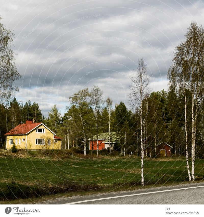 Finland Flat (apartment) House (Residential Structure) Nature Plant Clouds Spring Bad weather Tree Grass Birch tree Forest Detached house Facade Roof Street