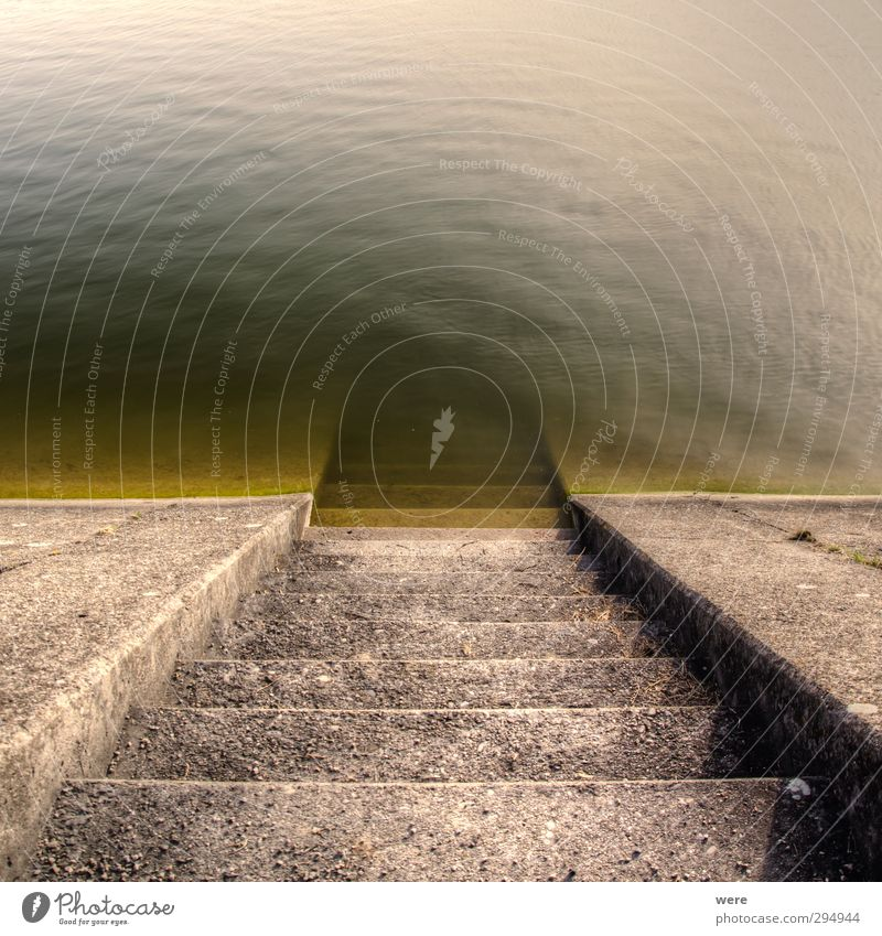 Stairs to the depths Hydroelectric  power plant Environment Water Lake Concrete Swimming & Bathing Wet stagger Colour photo Subdued colour Exterior shot