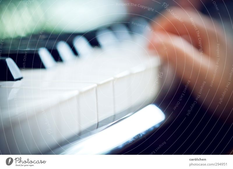 music Music Piano Blue Keyboard Make music music school Music tuition Colour photo Interior shot Detail Macro (Extreme close-up) Deserted Shallow depth of field