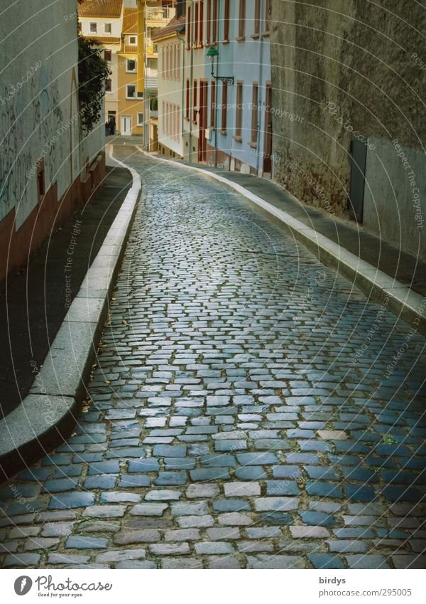 Down the alley Old town Deserted Alley Cobblestones Esthetic Authentic Town Perspective Lanes & trails Worms Colour photo Exterior shot Day