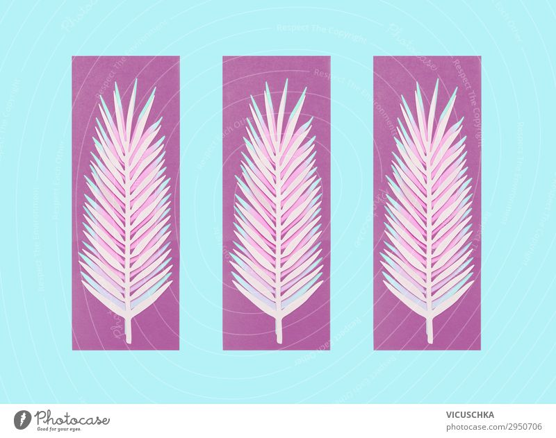 Purple palm leaves on blue background Style Design Summer Nature Leaf Decoration Ornament Pink purple Background picture Conceptual design Symbols and metaphors