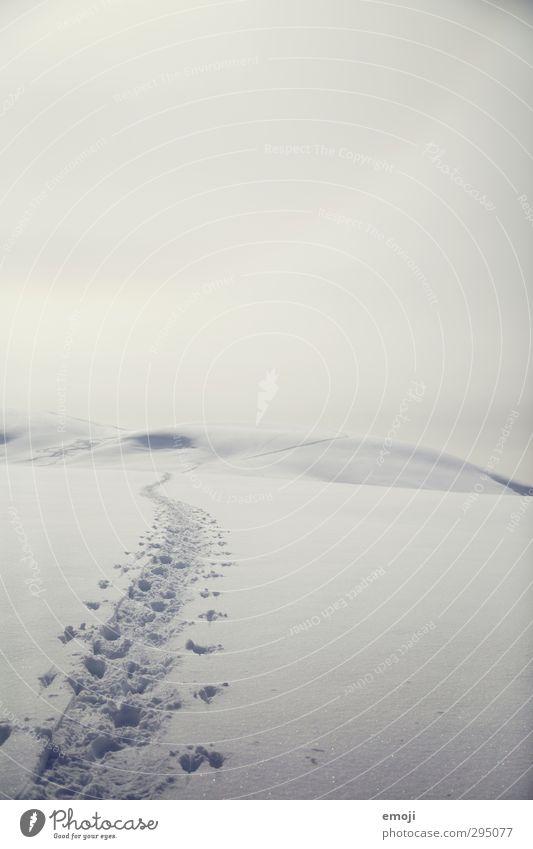 Sky Nature Landscape Winter Environment Far-off places Cold Snow Bright Horizon Empty Tracks Apocalyptic sentiment Snow track