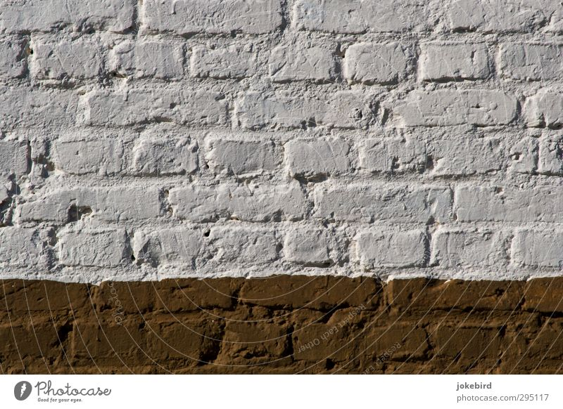 freshly painted Wall (barrier) Wall (building) White Brick Paintwork Structures and shapes Brick construction Brown Colour photo Exterior shot Deserted