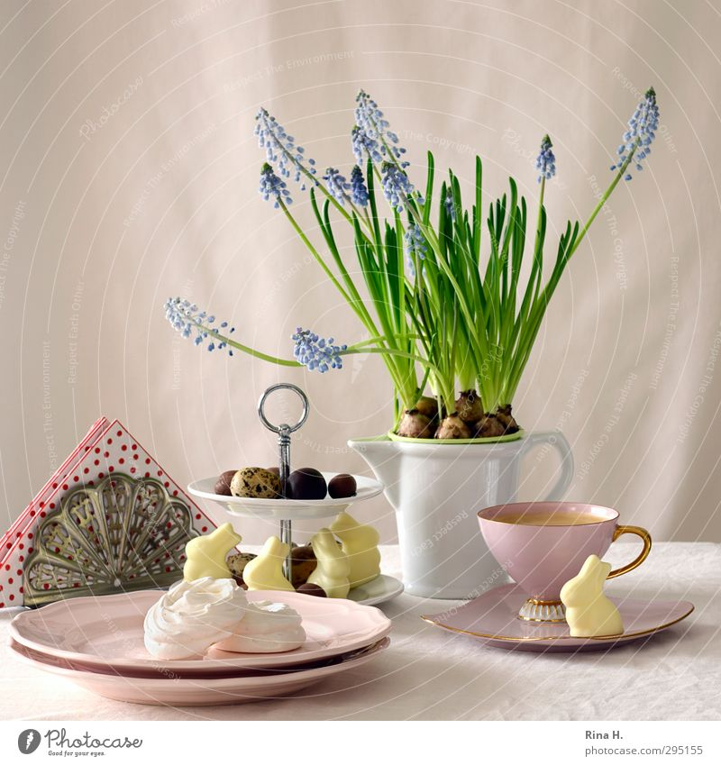 Easter Still II Candy Chocolate Coffee Crockery Plate Cup Jug Spring Pot plant Bright Pink Red Muscari Easter Bunny Easter egg Baiser napkins Interior shot