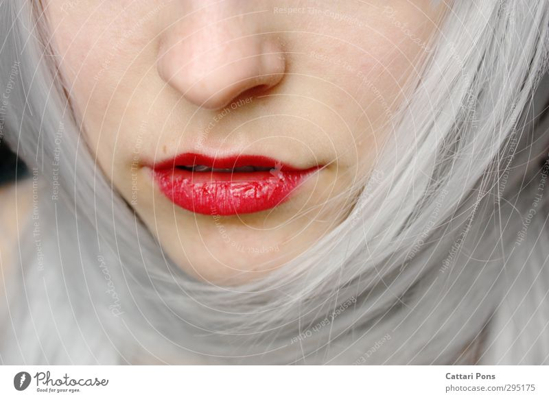 Like a pale spring morning still breathed by winter cold Beautiful Face Cosmetics Lipstick Hair and hairstyles White-haired Long-haired Esthetic Simple Elegant