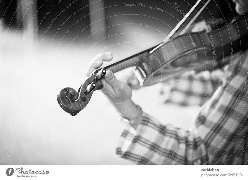 music Music Playing Violin String instrument Hand Grasp Make music Musician Musical instrument music school Music tuition Black & white photo Detail