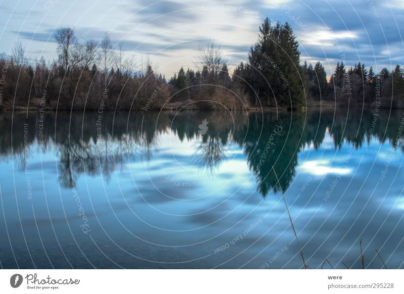 The lake rests still Swimming & Bathing Freedom Environment Nature Landscape Water Sky Clouds Sunrise Sunset Forest Lakeside Pond Deserted Relaxation Blue