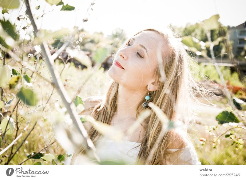light Human being Feminine Young woman Youth (Young adults) Woman Adults Life Hair and hairstyles Face 1 18 - 30 years Environment Nature Plant Sun Sunlight