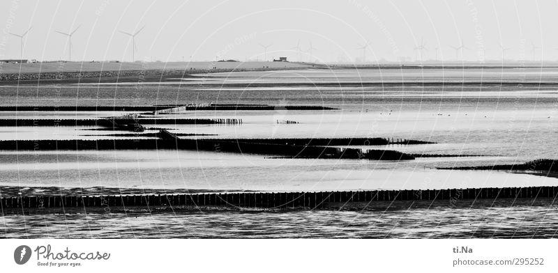 White Landscape Winter Black Spring Coast Gray Horizon Waves Beautiful weather Wet Tourism North Sea Silver