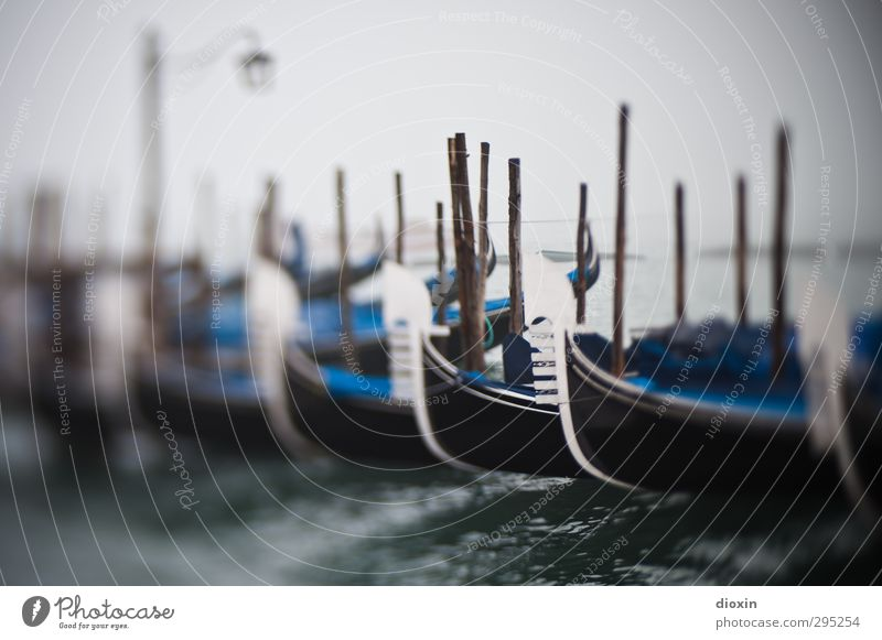 once upon a time in venice Vacation & Travel Tourism Sightseeing City trip Ocean Island Water Weather Bad weather Fog Lagoon Islands Venice Italy Town Port City