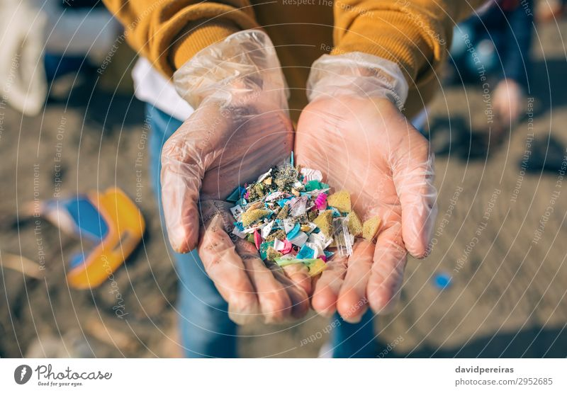 Hands with microplastics on the beach Beach Human being Man Adults Environment Sand Plastic Old Dangerous Teamwork Environmental pollution Indicate