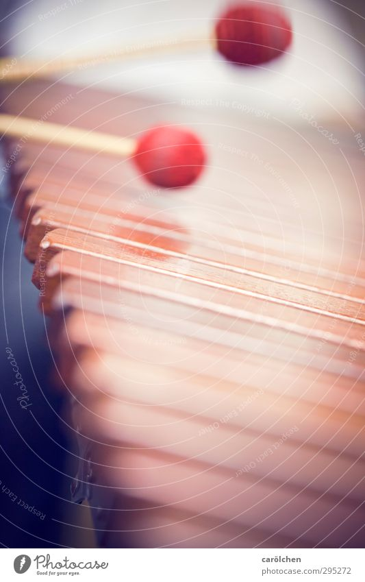 music Music Playing Marimba Xylophone Musical instrument Make music Red Drumstick Colour photo Close-up Detail Macro (Extreme close-up) Deserted