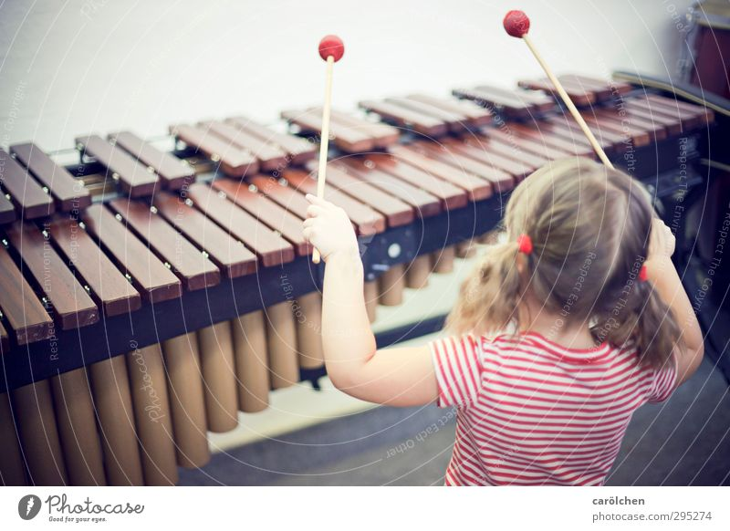 music Music Brown Red Musician Child Make music Xylophone Marimba Musical instrument music school Learn to play Colour photo Subdued colour Detail
