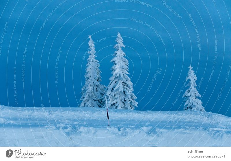 Sky Nature Blue Plant Tree Loneliness Landscape Clouds Winter Environment Dark Mountain Cold Snow Sadness Ice