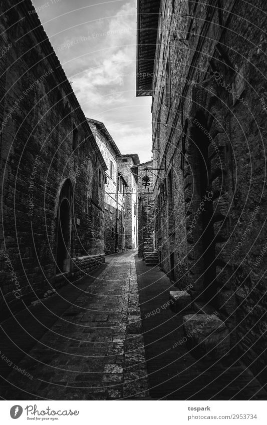 Road in the shade Street Moody Exterior shot Exceptional Perspective Italy Tuscany Florence Pisa