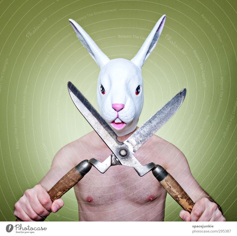 Happy Easter Human being Masculine Young man Youth (Young adults) Man Adults 1 30 - 45 years Animal Pet Animal face Hunting Fight Exceptional Creepy Uniqueness