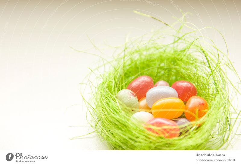 Easter greetings Candy Lifestyle Joy Living or residing Feasts & Celebrations Decoration Kitsch Odds and ends Easter egg nest Simple Bright Beautiful Uniqueness