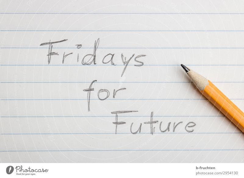 fridays for future Education School Environment Nature Climate Climate change Paper Piece of paper Pen Utilize Write Future Demonstration Opinion Freedom