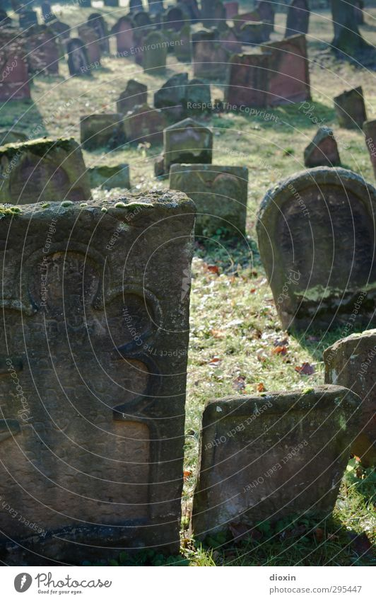 Old gravestones. Really old. Meadow Worms Deserted Cemetery Tourist Attraction Tombstone Stone Characters Ornament Authentic Creepy Sadness Grief Death