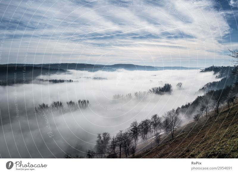 Foggy morning in a valley. Healthy Wellness Harmonious Senses Vacation & Travel Tourism Freedom Camping Mountain Hiking Sports Fitness Sports Training Climbing