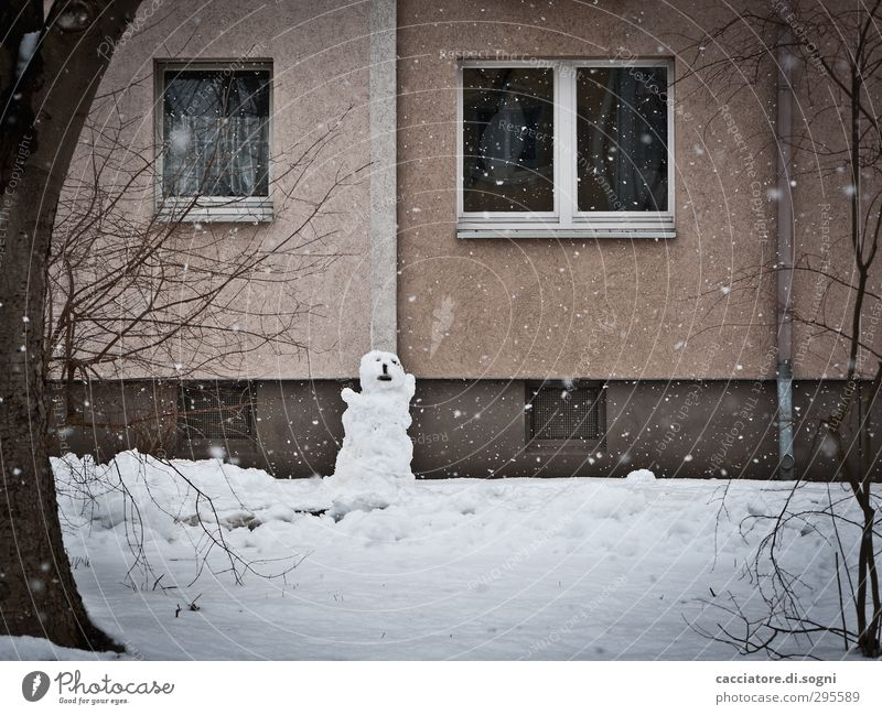 City White Loneliness Winter House (Residential Structure) Window Dark Cold Snow Emotions Sadness Garden Snowfall Brown Fear Facade