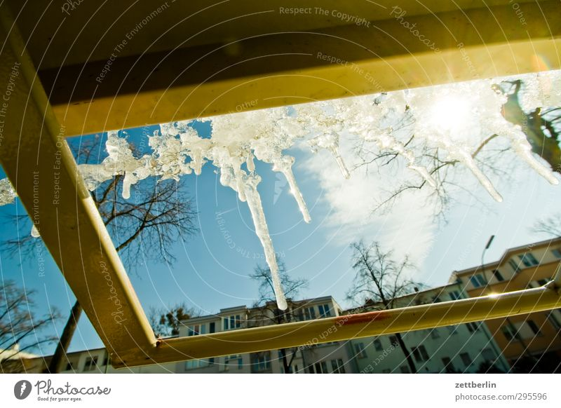 icicles Frost Cold Snow Snow layer wallroth Weather Winter Winter light Thaw Icicle Ice Sun Back-light Tree Sky Day Bright Metal Rod linkage